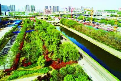 南京建邺区南河风光带绿化提升 打造慢行系统