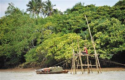 文琼捕捞:千张渔网向大海