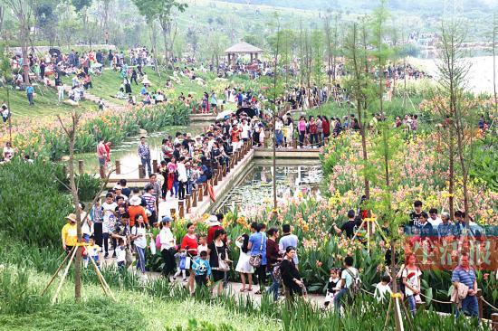 南宁那考河湿地公园人气爆棚 人多长椅少有些尴尬