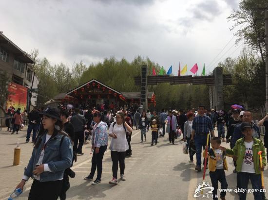 高原野生动物园游客攒动.jpg