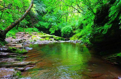 小南川 :是一个纯自然的景区,3公里长的峡谷,由古树潭,相思水,桦树湾