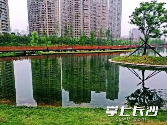 圭塘河生态景观区的美丽人工湖雨燕湖,将成为湖畔露营地。