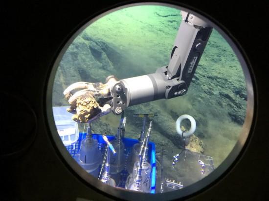 深潜马里亚纳海沟――海底世界见闻记