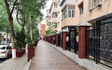 赛罕区地质南街小区人行步道