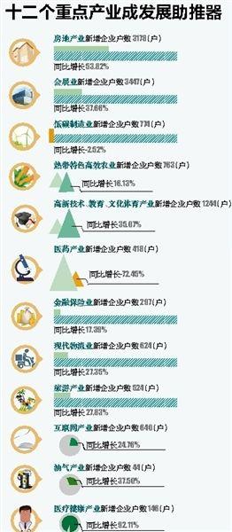 """海南企业发展现状:""""量增价涨""""内生动力强劲"""