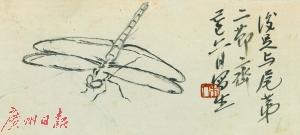 齐白石《蜻蜓写生稿》