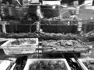 记者调查虾蟹市场猫腻76元大螃蟹38元绳子钱