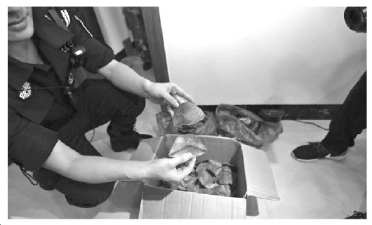 南宁抓获46名走私濒危野生动物嫌疑人--陕西频道--网