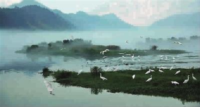 建德新安江:永远17℃的清澈江水