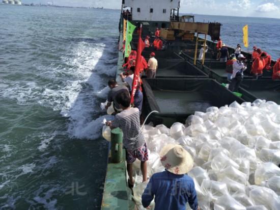 广西液化天然气(LNG)项目渔业资源补偿增殖放流活动在铁山港举行
