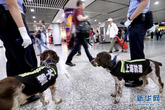 (社会)(1)上海地铁全面升级立体安防体系