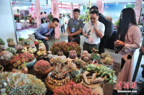 调查显示2016年中国城市生活节奏满意度昆明居首