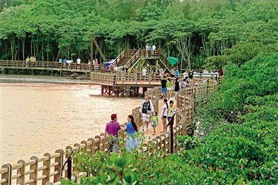 发展乡村旅游的根本目的是促农增收,而民宿游是增加农民收入最直接、最有效的办法之一,是乡村旅游的重要内容。