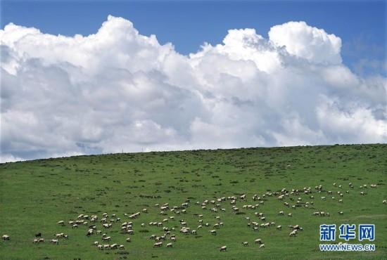 西北甘青行 多元风景线