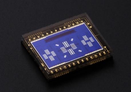 EOS 6D Mark II采用了佳能全45点十字型自动对焦感应器