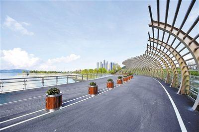 组图:深圳湾滨海休闲带西段