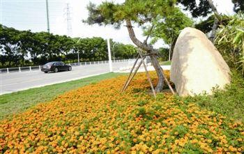 泰州市区7处新建公园游园向社会有奖征集名称