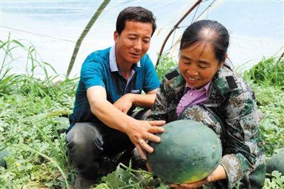 生态富硒产业带动农户增产增收