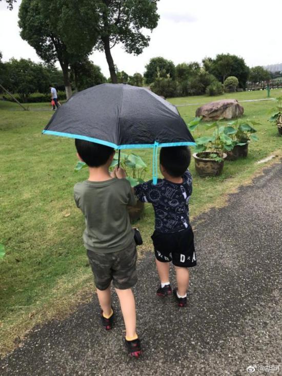 好兄弟!安吉为小鱼儿撑伞 雨中背影温馨可爱