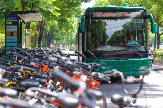 """共享单车""""入侵""""霸占杭州公交车站"""