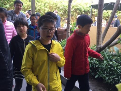 华媒:中国赴美游学团萎缩 走马观花式行程不吸睛