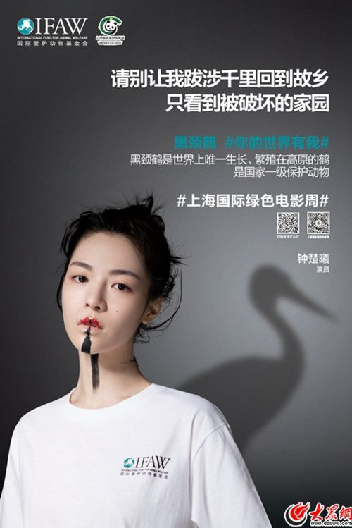 钟楚曦拍公益海报化身黑颈鹤 为珍稀野生动物发声