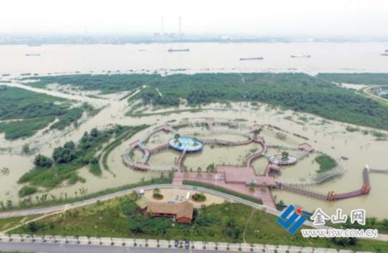 长江镇江段水位超警戒线 湿地公园里灌满江水