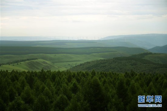 塞罕坝:构筑京津生态屏障