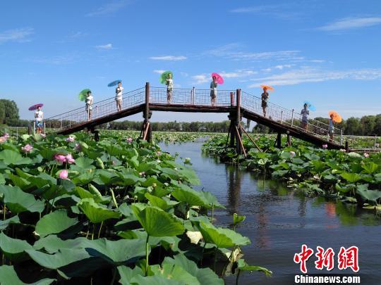 """桥上的""""荷花仙子""""与仙子湖美景很契合。 赵桂华 摄"""