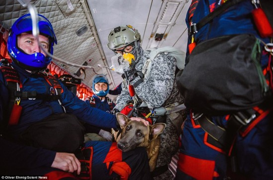冲上云霄: 小狗400米高空完成跳伞训练