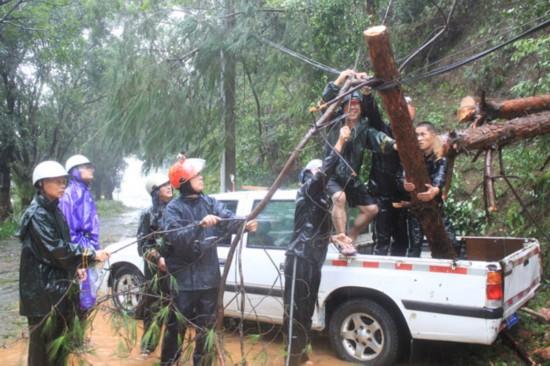 泉州市水利部门一线党员干部及时清理水库倒伏树木。
