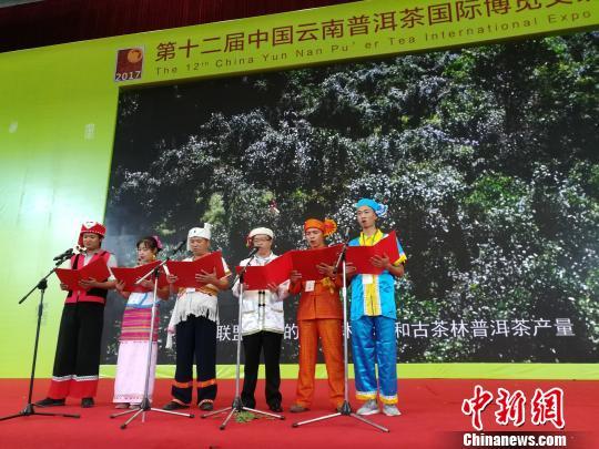 普洱众多新品牌亮相第十二届云南茶博会