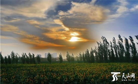 从城外往城内望去,城镇被雾气环绕,初升的太阳被一片还未散去的云层