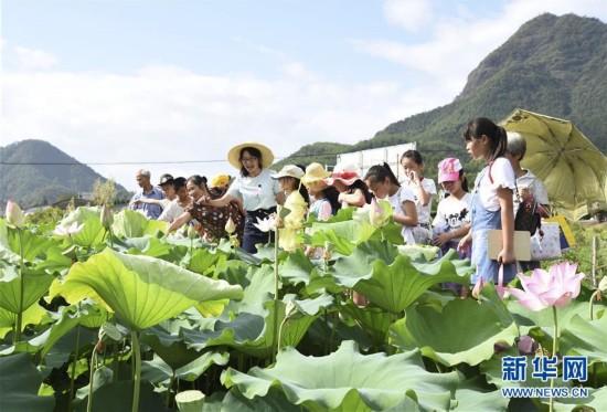 田间课堂 乐享暑假
