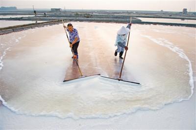 福建省最大的食盐生产基地迎来生产时节