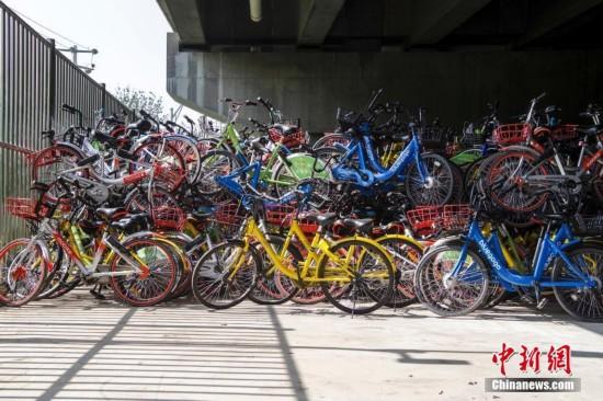 """北京数千辆单车被""""遗弃""""桥下"""