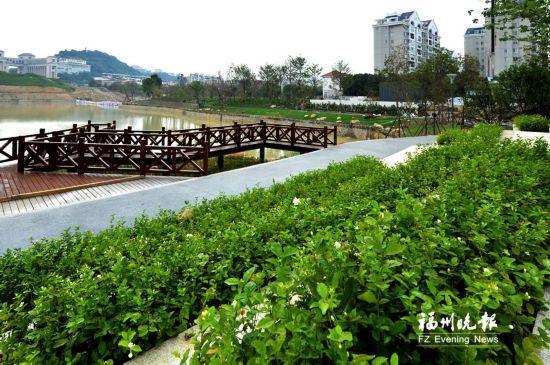福州井店湖公园绿化基本完工 湖内将头发碳素纤维生态草