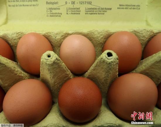 """欧洲""""毒鸡蛋""""事件影响欧洲多国波及中国香港"""