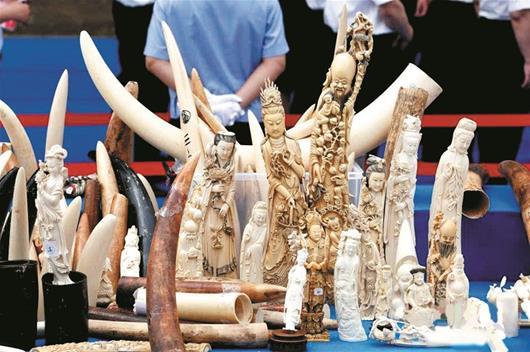 武汉即日起禁止交易象牙及制品 不能交易意味无升值空间?