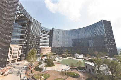 南京南部新城医疗中心外立面广场绿化全面完工