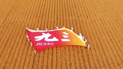 九三集团荣获黑龙江省质量领域最高奖项 彰显民族企业卓越风范