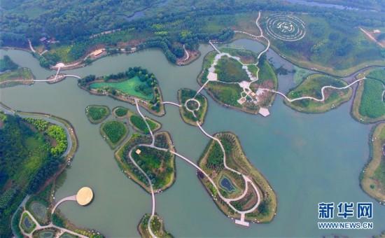 河南鹤壁:淇河湿地生态美