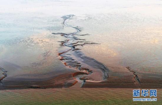 航拍盐城湿地 星辉斑斓绚丽多彩