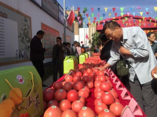掌政镇首届西红柿文化节开幕