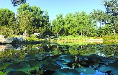 玉渊潭湿地对北京市民预约开放