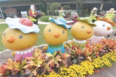 色彩斑斓 南京四平路广场花团锦簇迎国庆