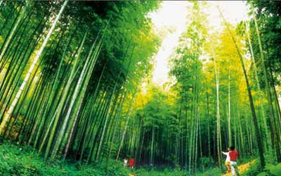 濮塘风景区