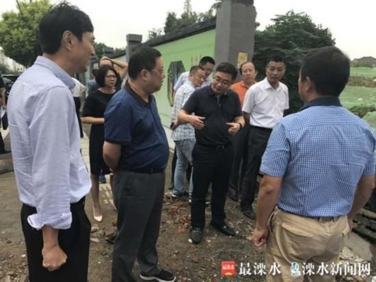南京溧水环境综合整治迎接市级考核