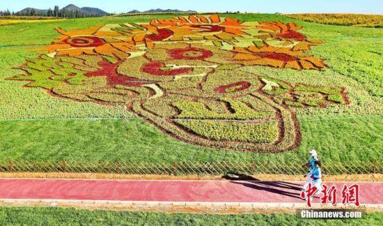 占地40亩的梵高名画《向日葵》亮相秦皇岛(组图)