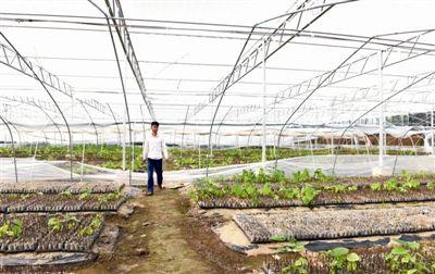 海门高标准农田建设南通领先 年底前建成5万亩